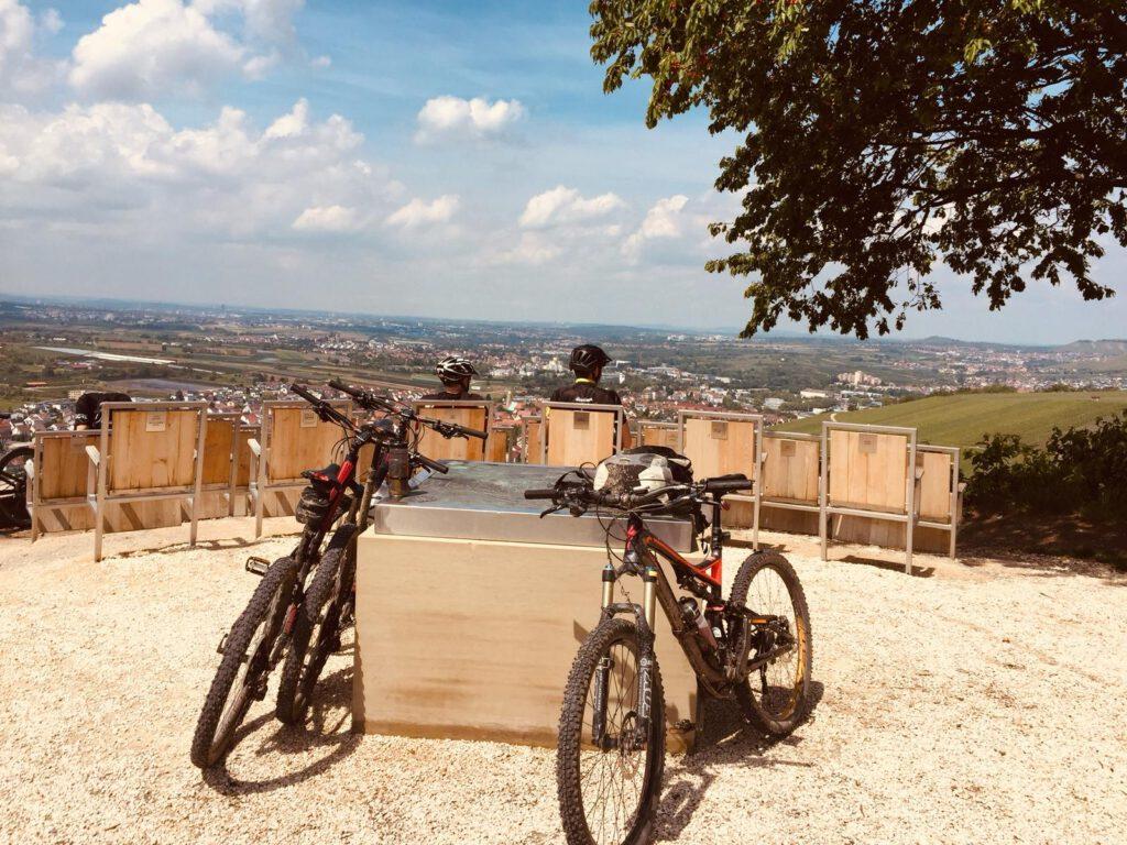 Remstalkino in den Weinbergen von Beutelsbach mit Fahhrädern