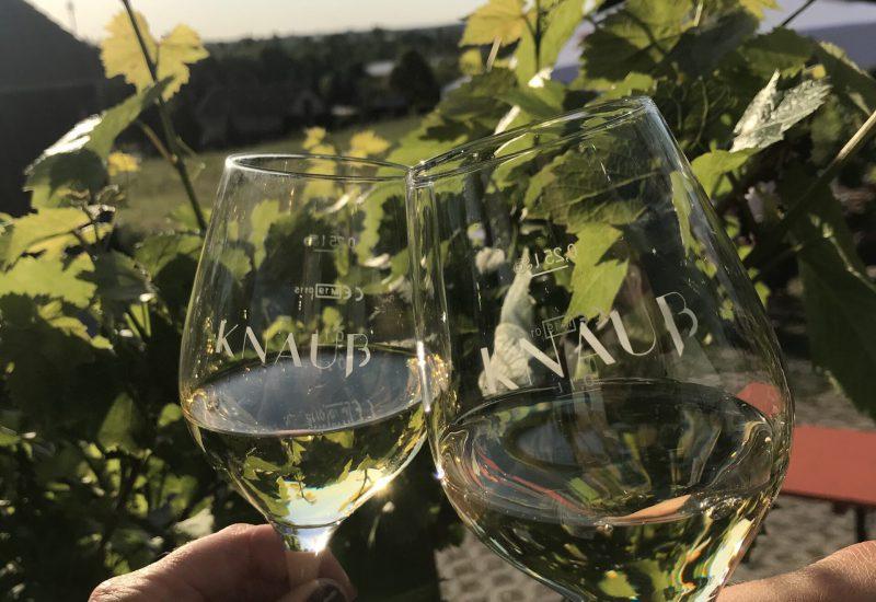 Weingut Knauss_Sonna Besa in Strümpfelbach