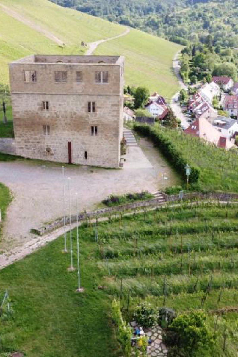 Y-Burg in Kernen-Stetten